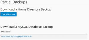 directory-backup-for-your-website